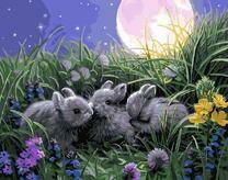 Кролики в траве
