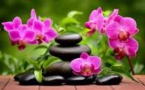 Картина по номерам 40x50 Мистические цветы орхидеи