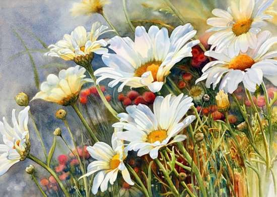 Картина по номерам 40x50 Золотистые ромашки в поле
