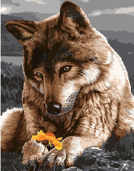 Картина по номерам 40x50 Волк хранит цветок