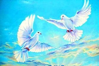 Картина по номерам 40x50 Белые голуби