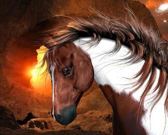 Картина по номерам 40x50 Красивая лошадь