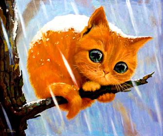 Картина по номерам 40x50 Бедный котик