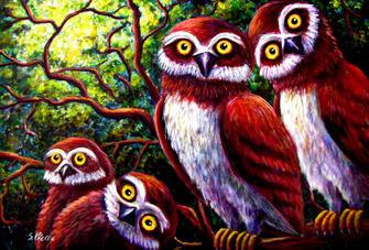 Картина по номерам 40x50 Четыре напуганных совы