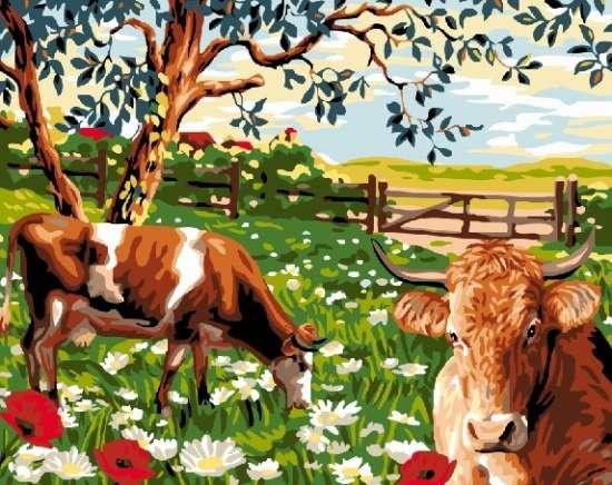 Картина по номерам 40x50 Коровы на летнем лугу в цветах