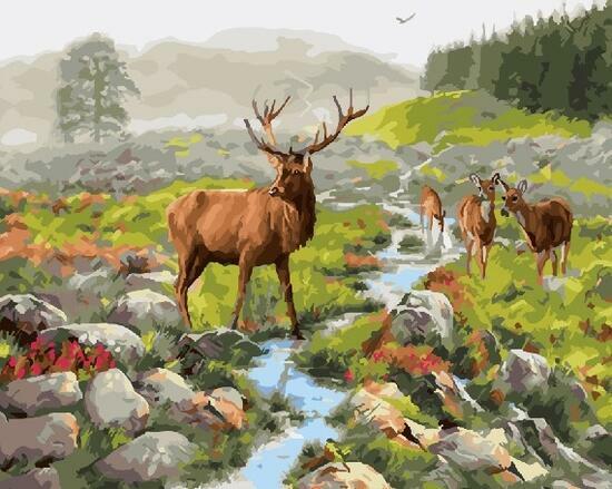 Картина по номерам 40x50 Стадо благородный оленей у реки