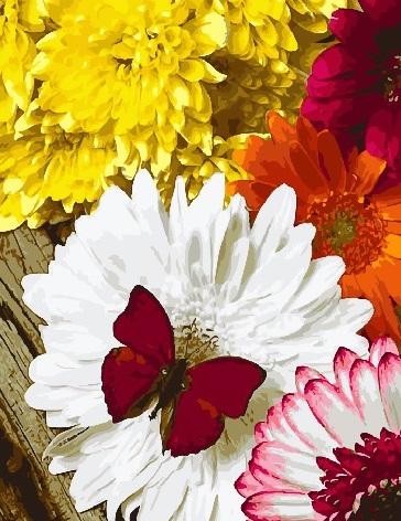 Картина по номерам 40x50 Алая бабочка на белом цветке