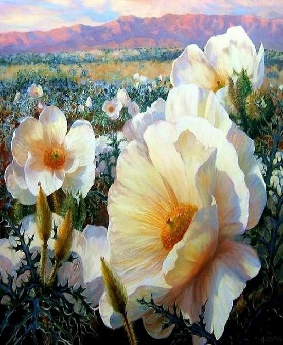 Картина по номерам 40x50 Белые цветы в поле