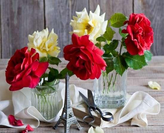 Картина по номерам 40x50 Цветы в стаканах