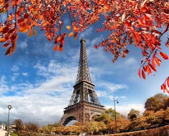 Картина по номерам 40x50 Эйфелева башня сквозь осеннюю листву