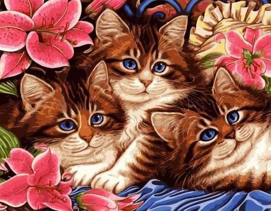 Картина по номерам 40x50 Голубоглазые котята среди цветов