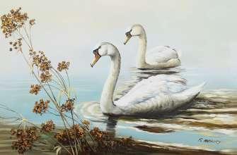 Картина по номерам 30x40 Лебеди на плаву