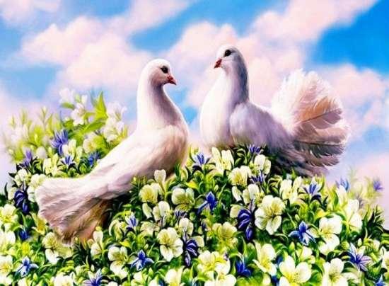 Алмазная мозаика 40x50 Две белых голубки на цветущем кустике