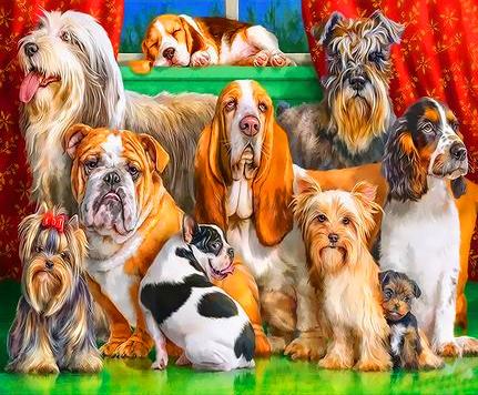 Картина по номерам 50x65 Разнопородистые собаки