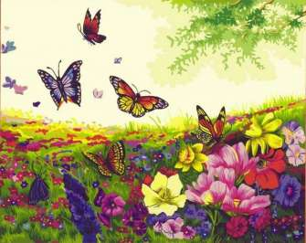 Картина по номерам 40x50 Бабочки в поле