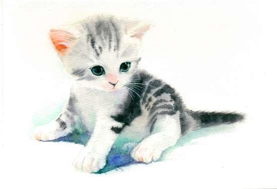 Картина по номерам 40x50 Маленький полосатый котенок