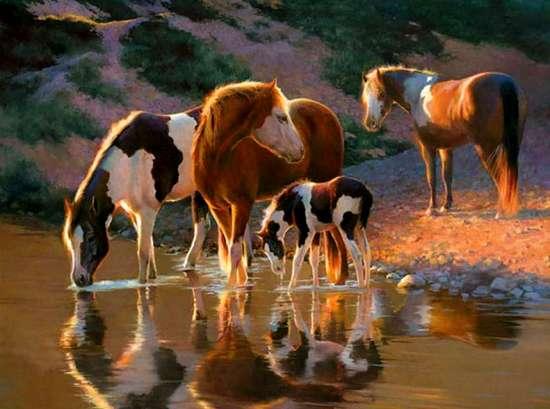Картина по номерам 40x50 Табун диких лошадей у водопоя
