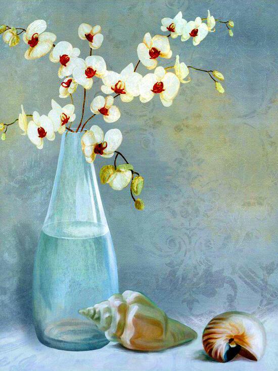 Картина по номерам 40x50 Орхидея и ракушки