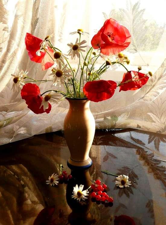 Картина по номерам 40x50 Маки и ромашки у окна