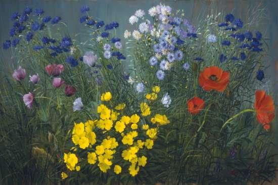 Картина по номерам 40x50 Полевые цветы и маки