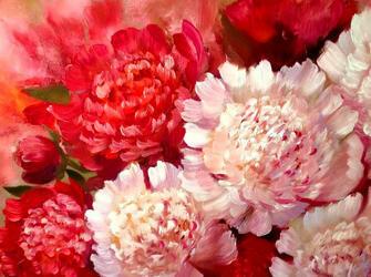 Картина по номерам 40x50 Ярко-красные и розовые пионы
