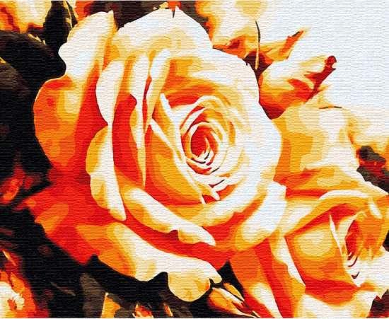 Картина по номерам 40x50 Розы цвета солнца