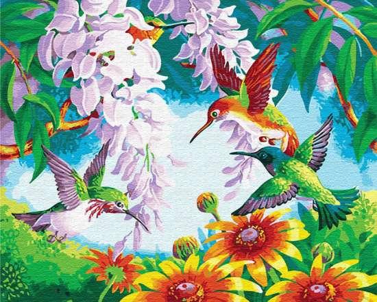 Картина по номерам 40x50 Колибри среди цветов