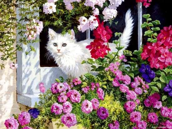 Картина по номерам 40x50 Белый кот в саду