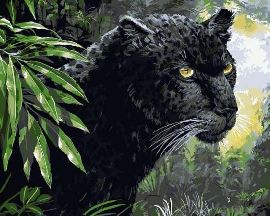 Картина по номерам 40x50 Грациозная пантера