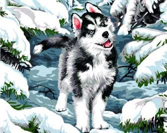 Картина по номерам 40x50 Щенок в зимнем лесу