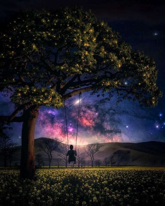 Картина по номерам 40x50 Качеля на дереве под ночным небом