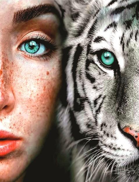 Алмазная мозаика 40x50 Девушка и белая тигрица