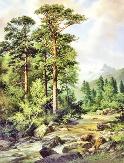 Алмазная мозаика 40x50 Пейзаж с рекой и горами