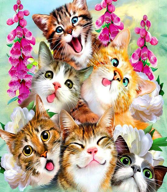 Картина по номерам 40x50 Веселые котята и цветы