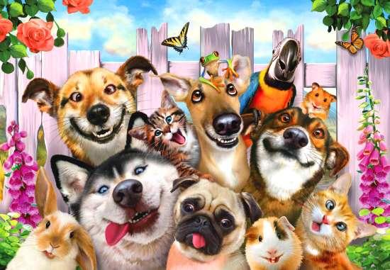 Картина по номерам 40x50 Милые собаки