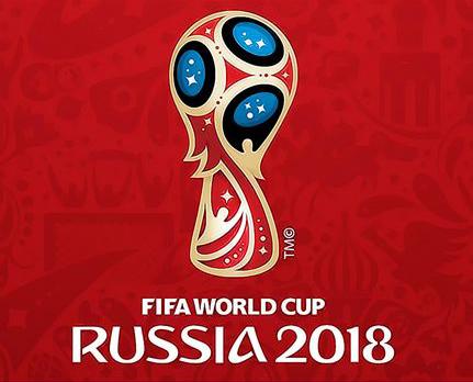 Картина по номерам 40x50 Кубок России 2018
