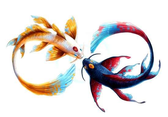 Картина по номерам 40x50 Рыбки Инь-Янь