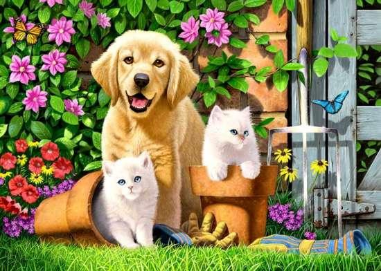 Картина по номерам 40x50 Щенок лабрадора и два белых котенка