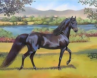 Картина по номерам 40x50 Черный конь у реки