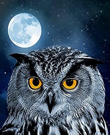 Картина по номерам 40x50 Филин на фоне полной луны