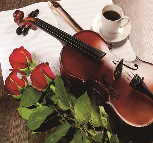 Алмазная мозаика частичная выкладка 21x25 Кофе, скрипка и розы