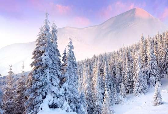 Алмазная мозаика 40x50 Заснеженные леса в горах