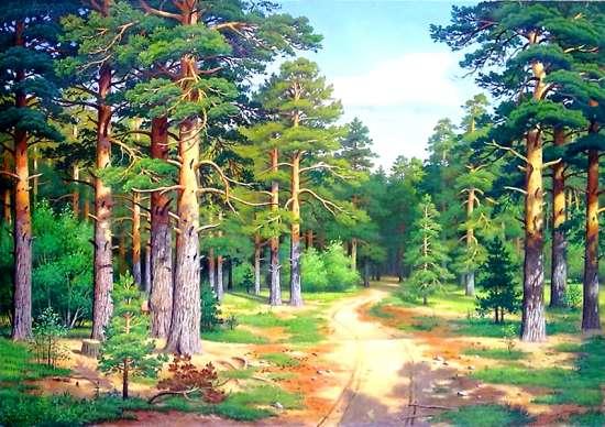 Алмазная мозаика 40x50 Дорога через сосновый лес