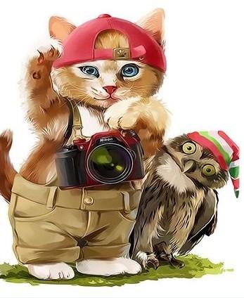 Картина по номерам 30x40 Котенок-фотограф и сова